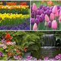 Room Ideas: The Best Spring Garden Decor Ideas