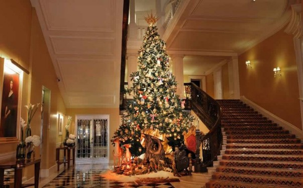 10 Celebrities' Christmas Trees Luxury Decorations celebrities christmas trees luxury decorations 10 Celebrities Christmas Trees Luxury Decorations Room Decor Ideas Room Idea Christmas Decoration Ideas Christmas Tree Pictures Celebrity Christmas Tree Celebrities Christmas Trees 11 603x375